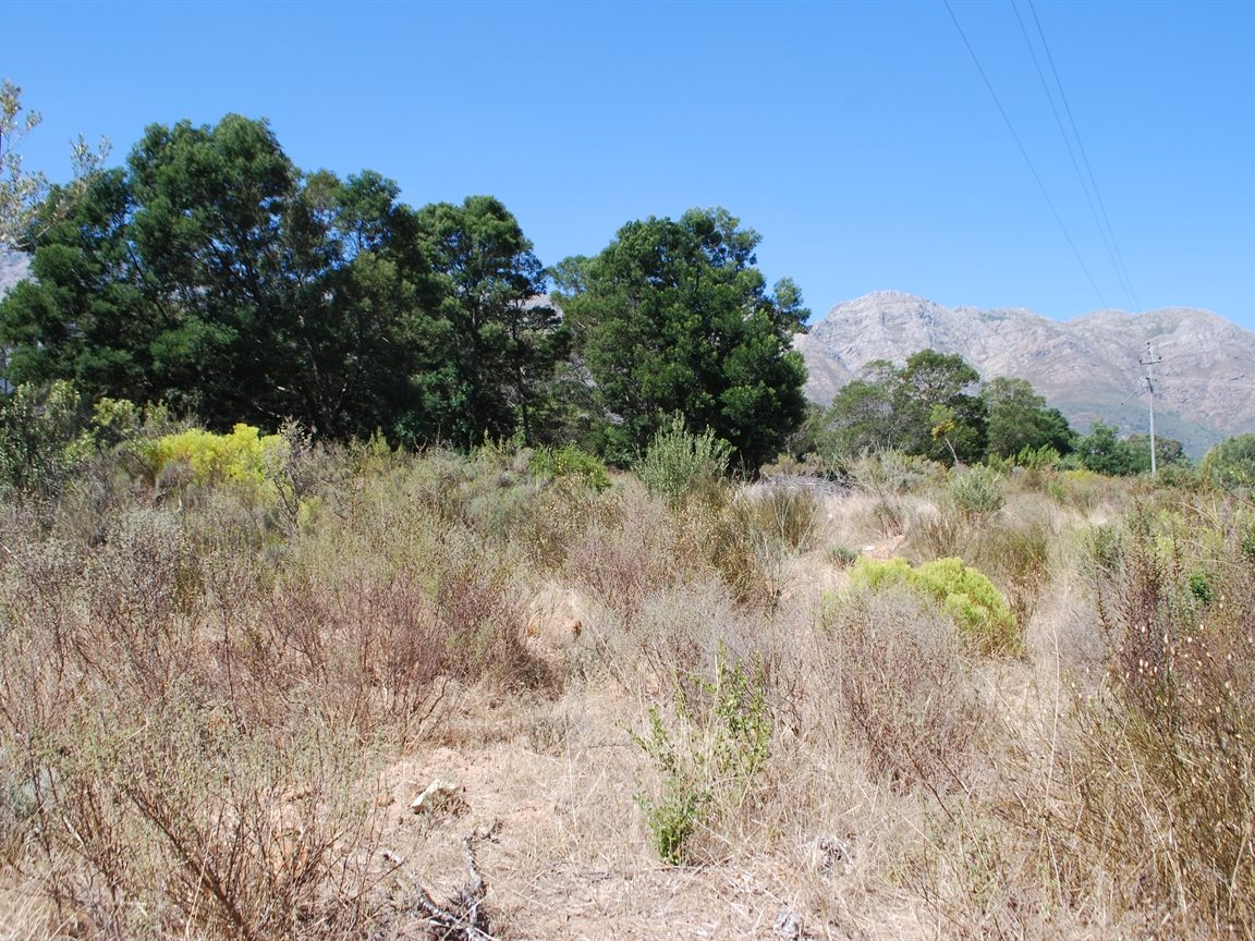 Tulbagh property for sale. Ref No: 12782916. Picture no 8