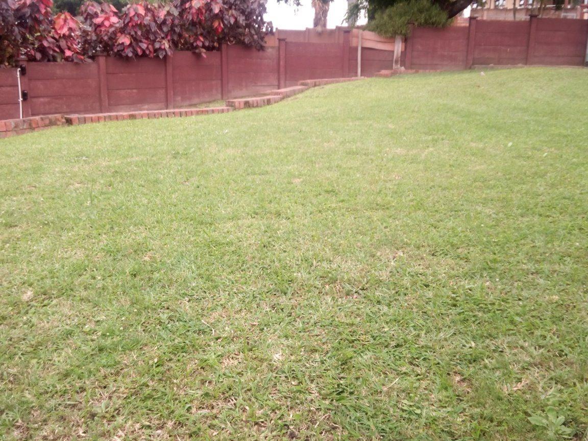 Arboretum property to rent. Ref No: 13552418. Picture no 14