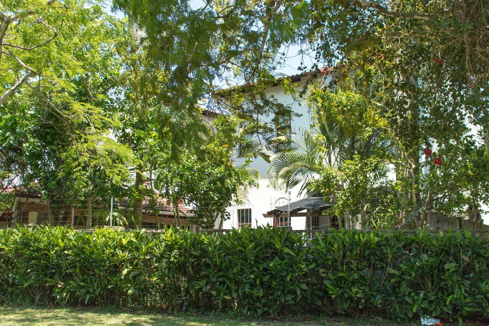 Meer En See property to rent. Ref No: 13598653. Picture no 13