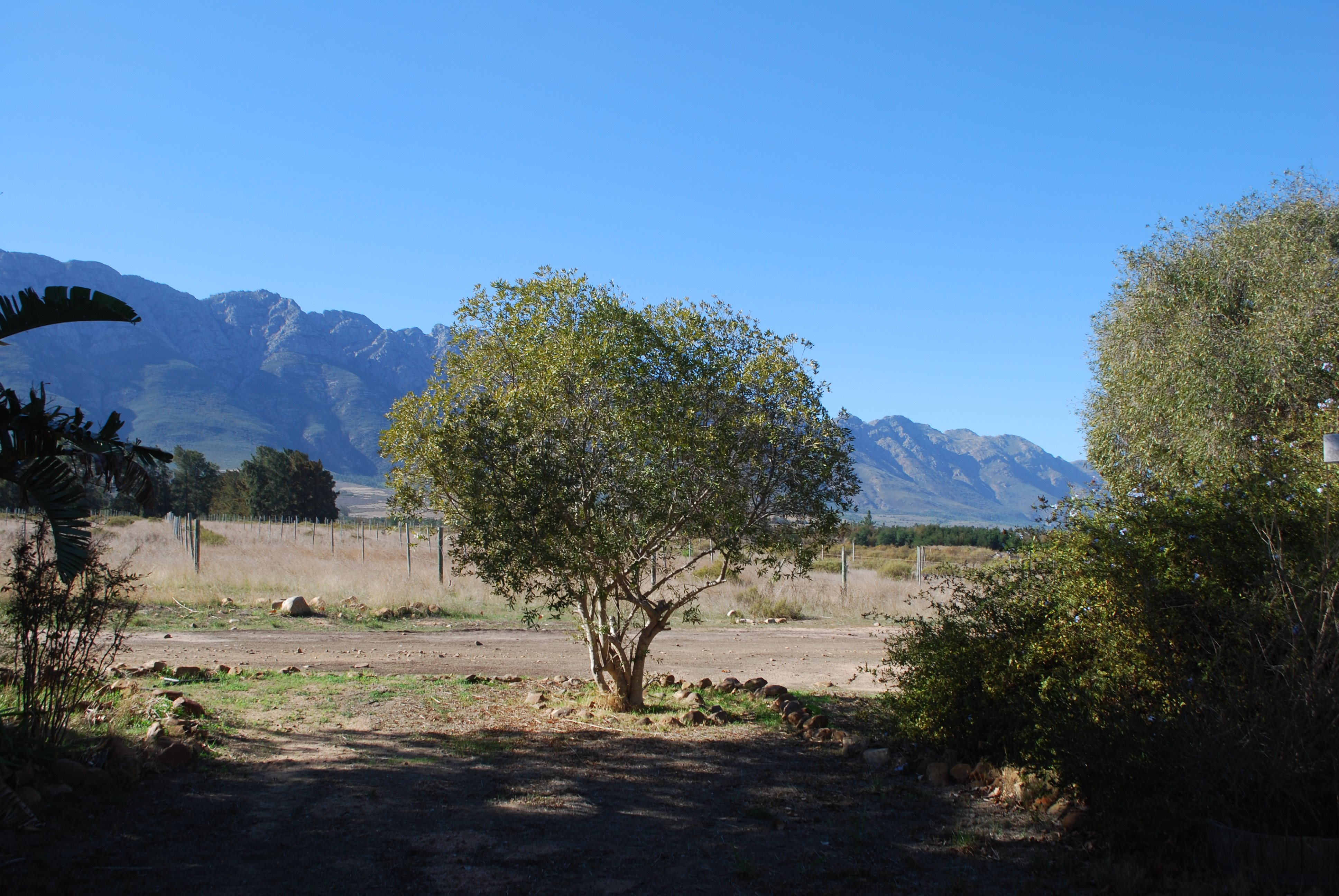 Tulbagh property for sale. Ref No: 13483757. Picture no 24
