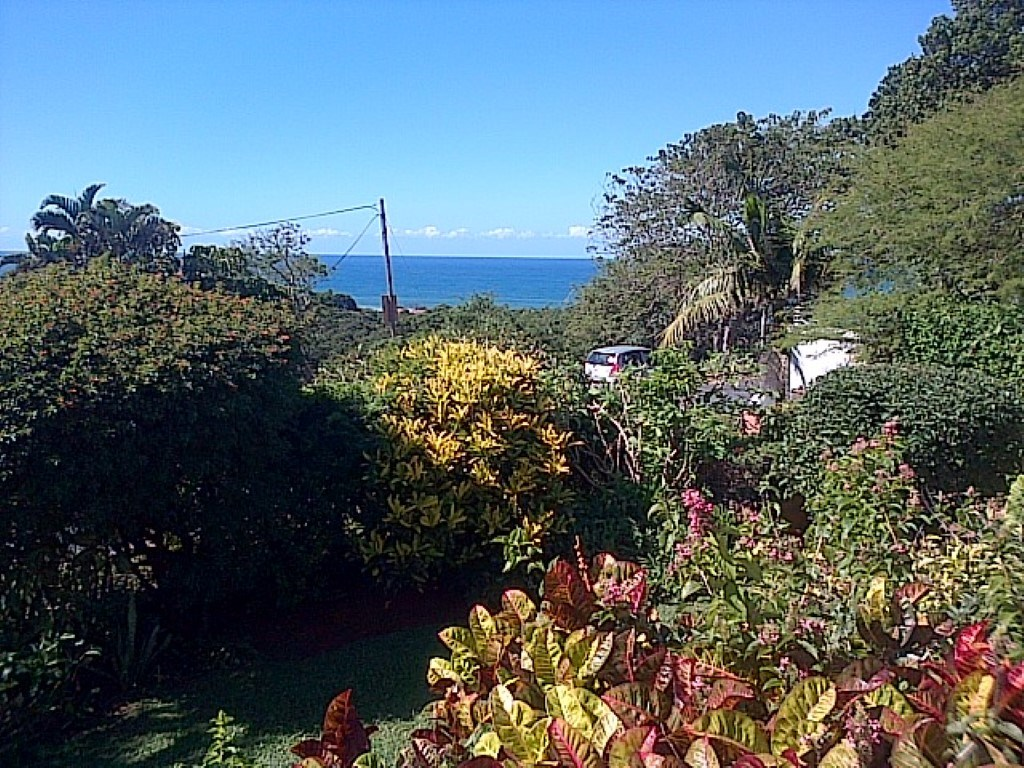 Shelly Beach property for sale. Ref No: 12735349. Picture no 23