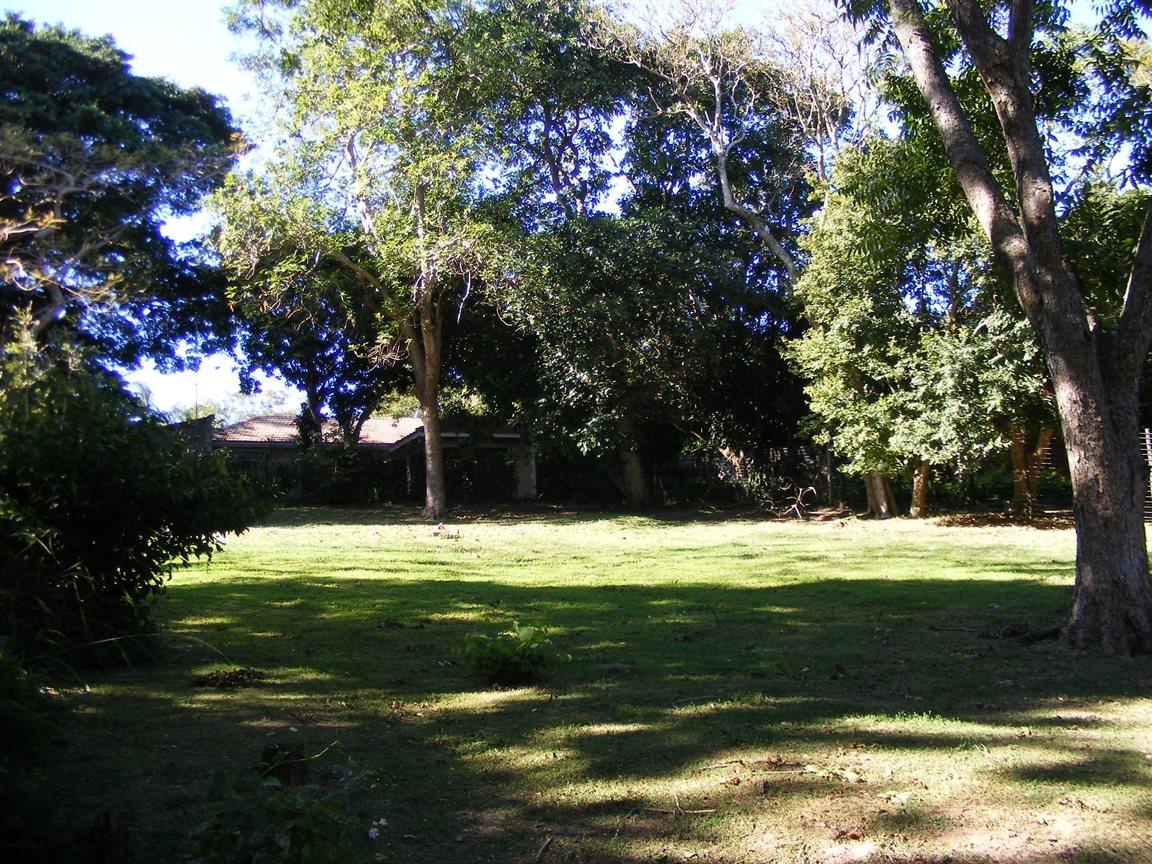 Pennington property for sale. Ref No: 12791453. Picture no 5