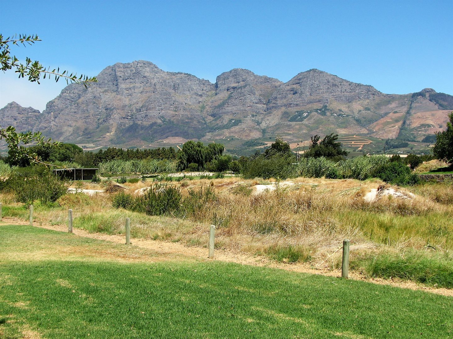 Pearl Valley On Val De Vie property for sale. Ref No: 13536297. Picture no 10