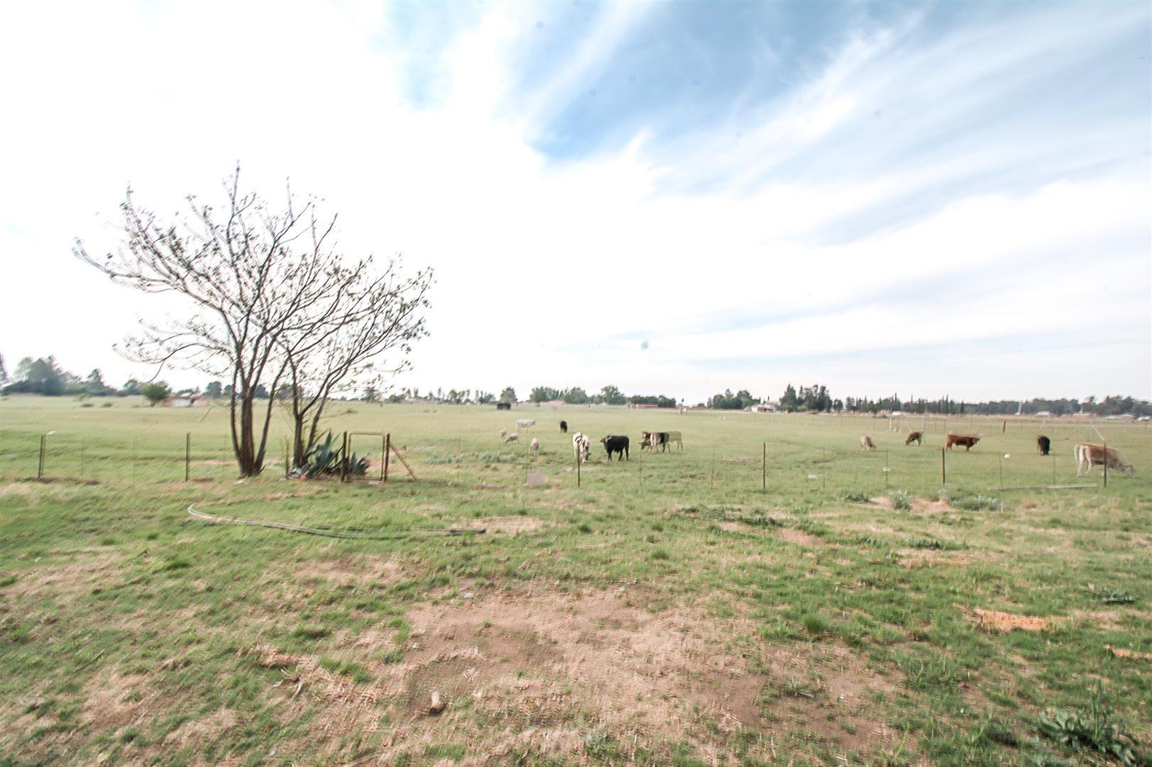 Meyerton, Homelands Property  | Houses For Sale Homelands, Homelands, Farms 3 bedrooms property for sale Price:539,000