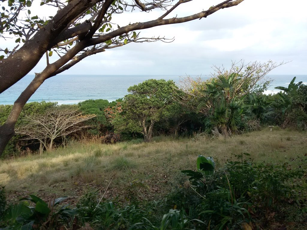 Bazley Beach property for sale. Ref No: 13331041. Picture no 8