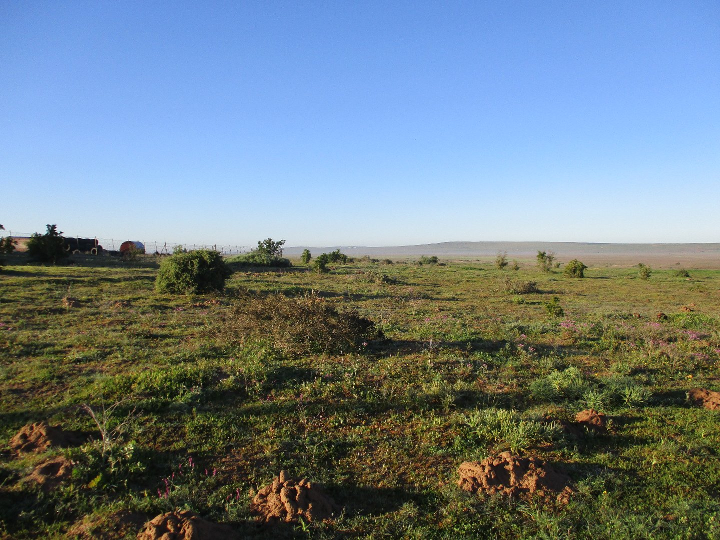 Property and Houses for sale in Trekoskraal, Vacant Land - ZAR 900,000