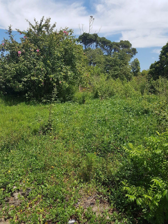 Craigieburn property for sale. Ref No: 13591749. Picture no 7