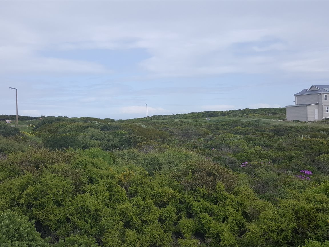Yzerfontein property for sale. Ref No: 13385033. Picture no 2