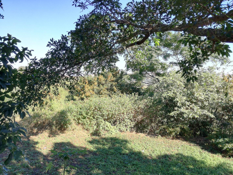 Craigieburn property for sale. Ref No: 13617032. Picture no 12