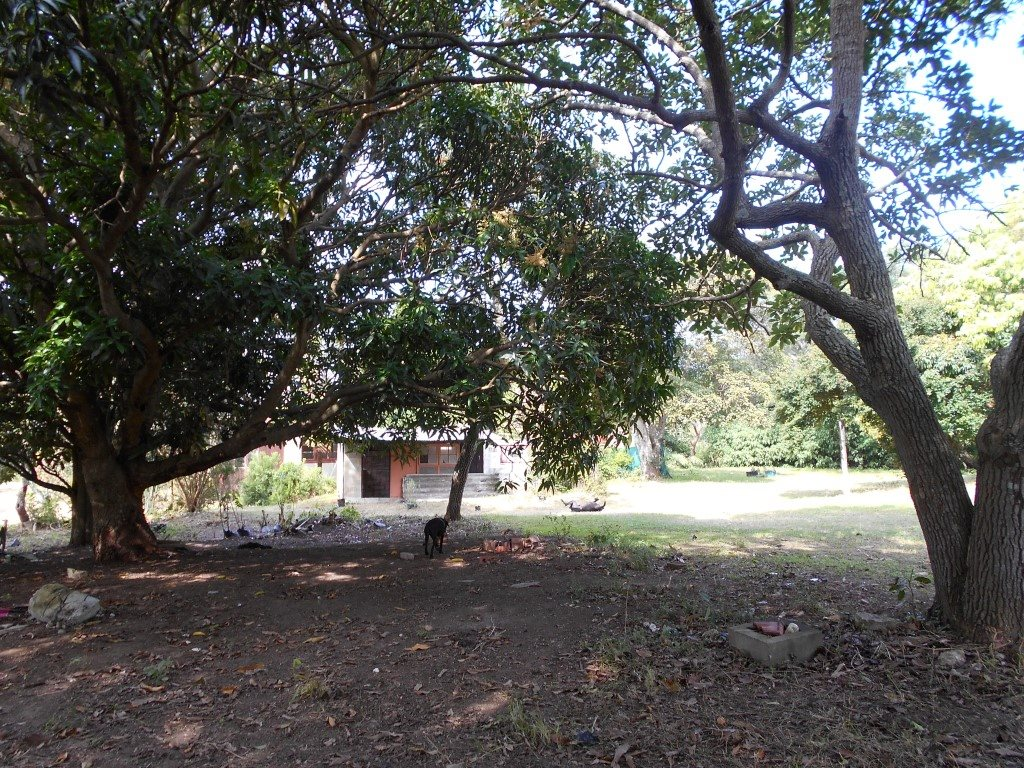 Uvongo property for sale. Ref No: 13325400. Picture no 16