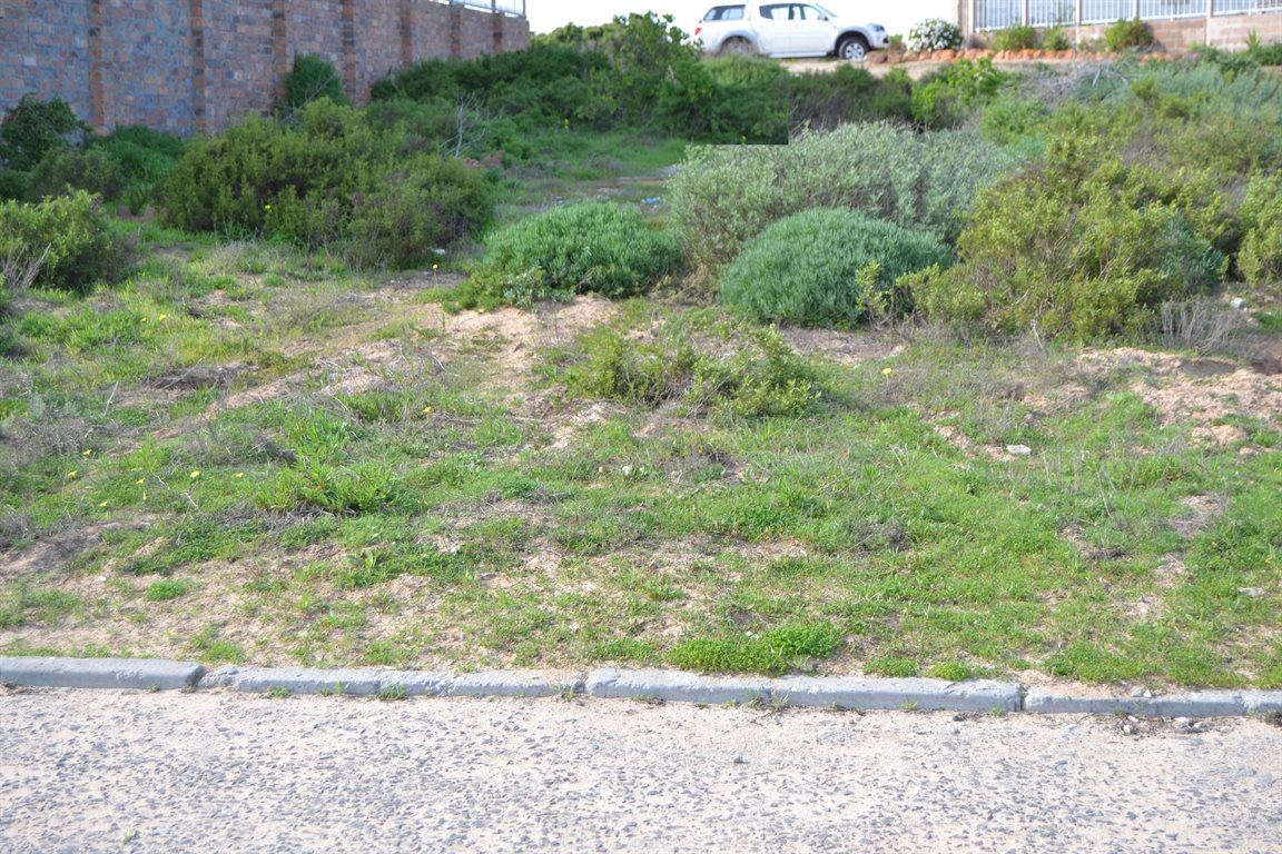 Lamberts Bay property for sale. Ref No: 13378668. Picture no 2