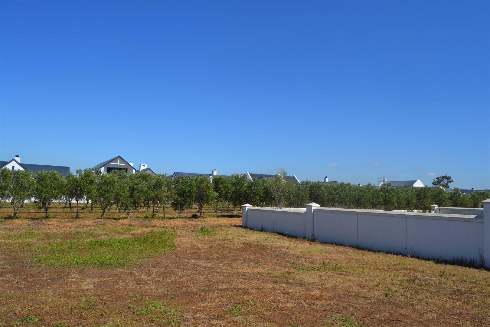 Croydon Olive Estate property for sale. Ref No: 13541527. Picture no 2