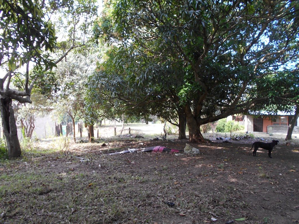 Uvongo property for sale. Ref No: 13325400. Picture no 14