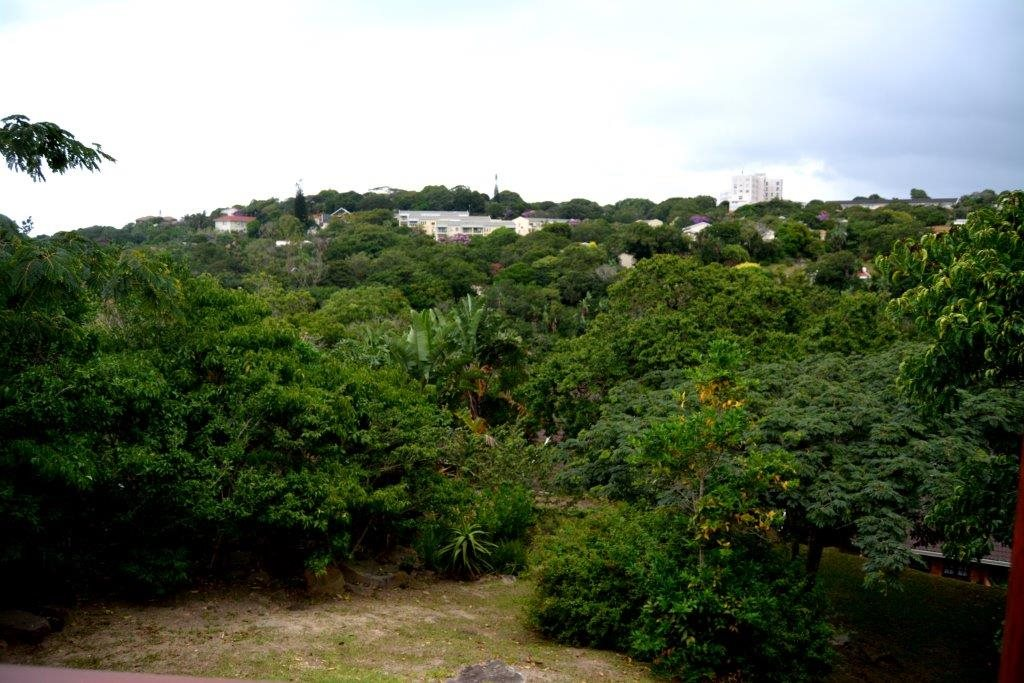 Margate property for sale. Ref No: 12784457. Picture no 5