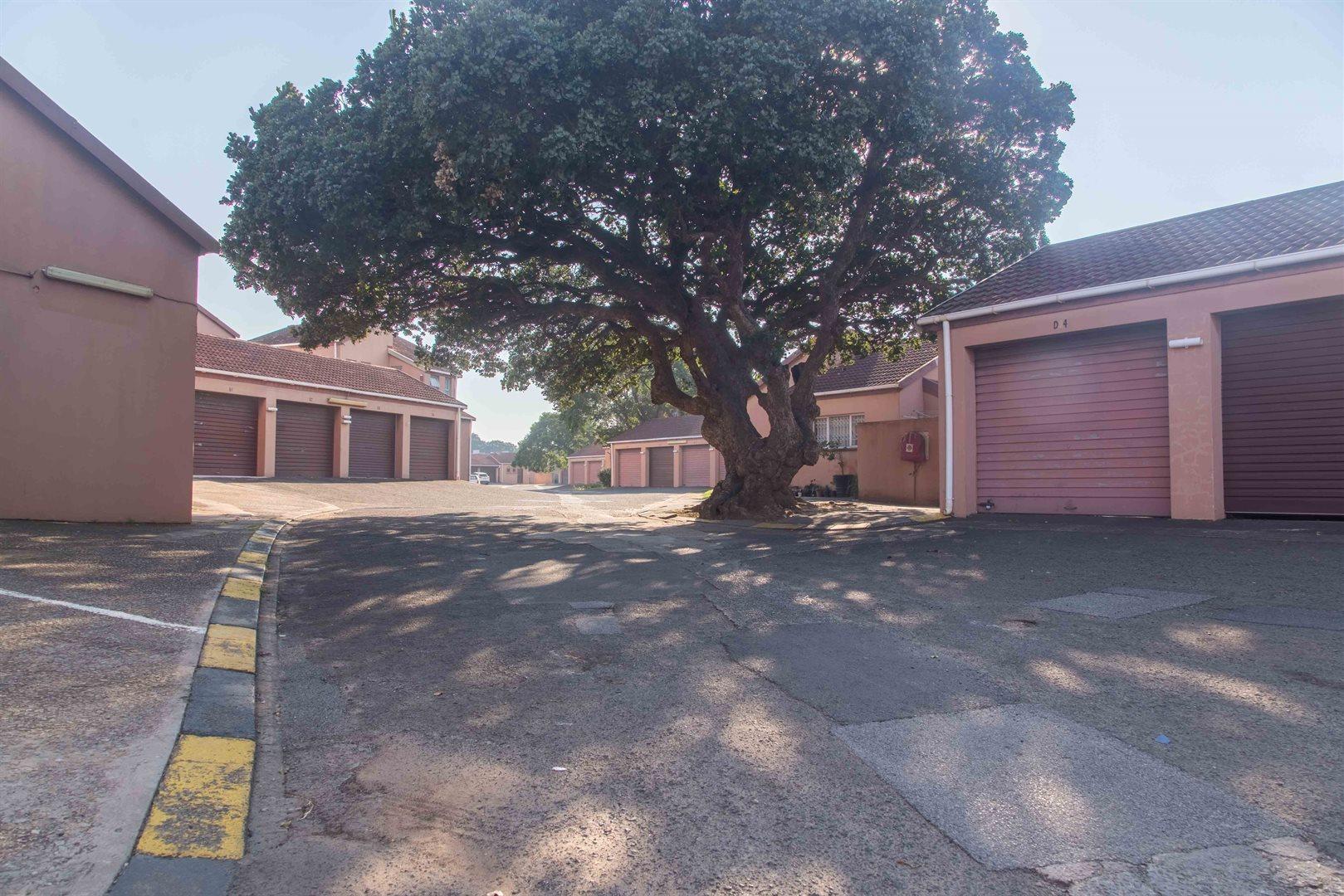 Arboretum property to rent. Ref No: 13569635. Picture no 2