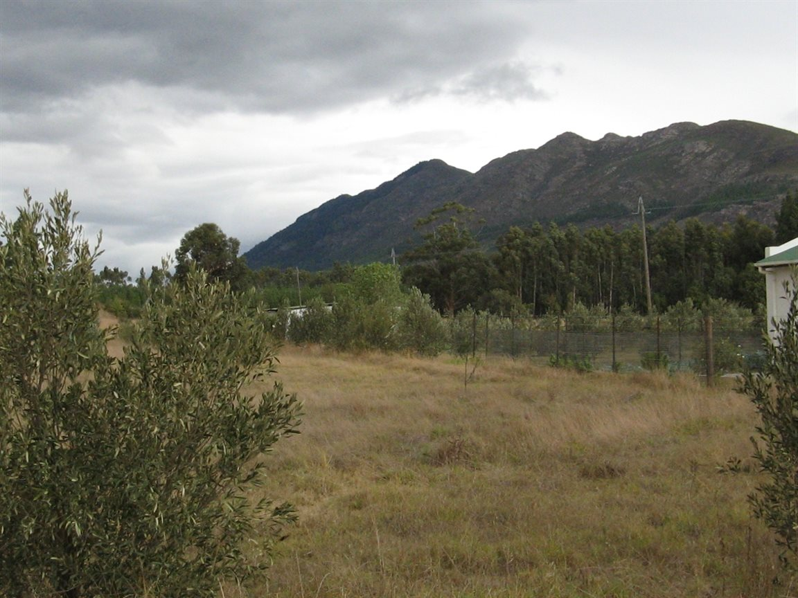 Tulbagh property for sale. Ref No: 12777178. Picture no 4