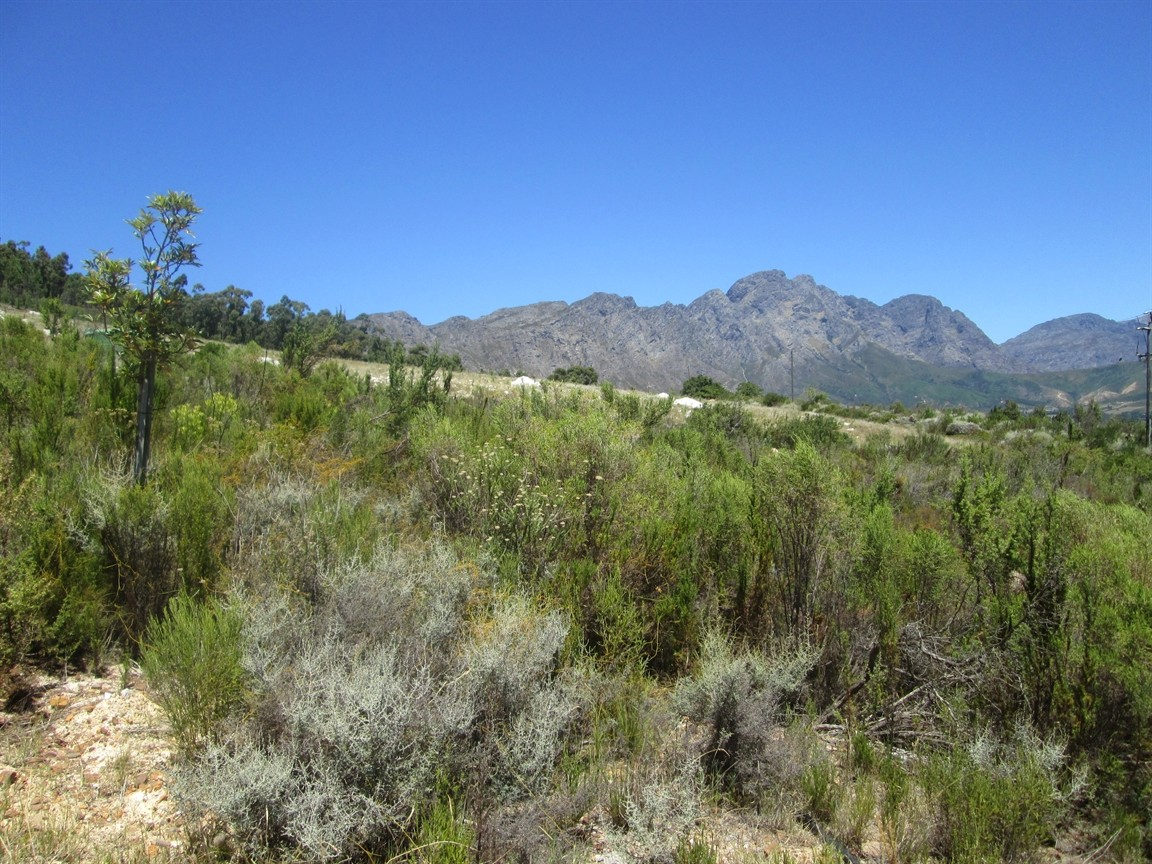 Franschhoek property for sale. Ref No: 12729923. Picture no 4