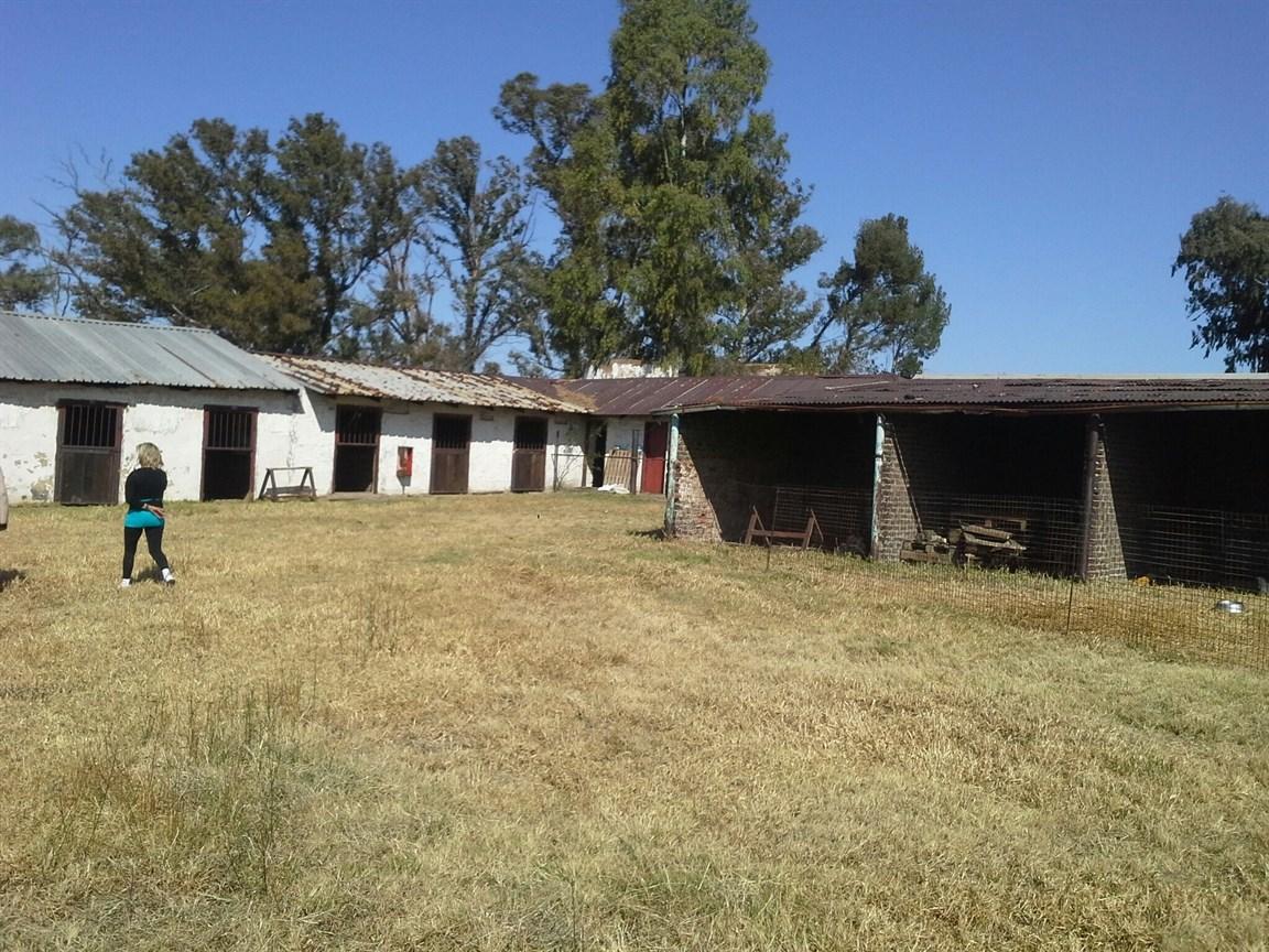 Deneysville property for sale. Ref No: 12737782. Picture no 18