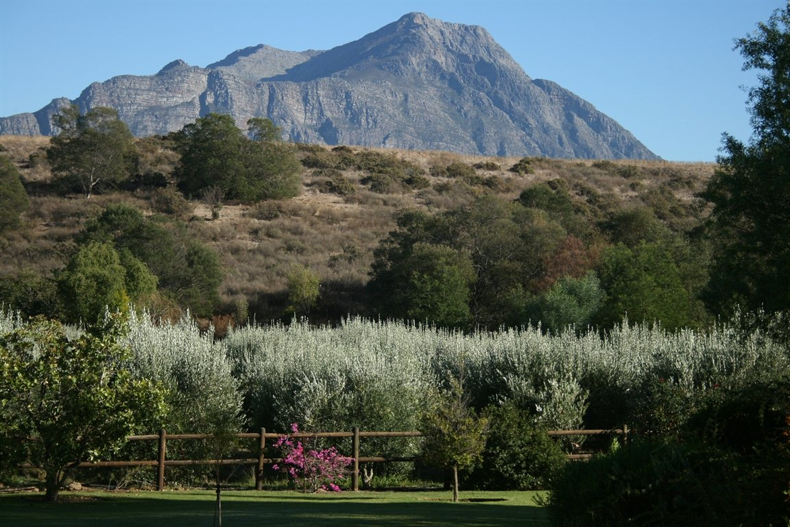 Property and Houses for sale in Tulbagh, Farms, 5 Bedrooms - ZAR 4,900,000