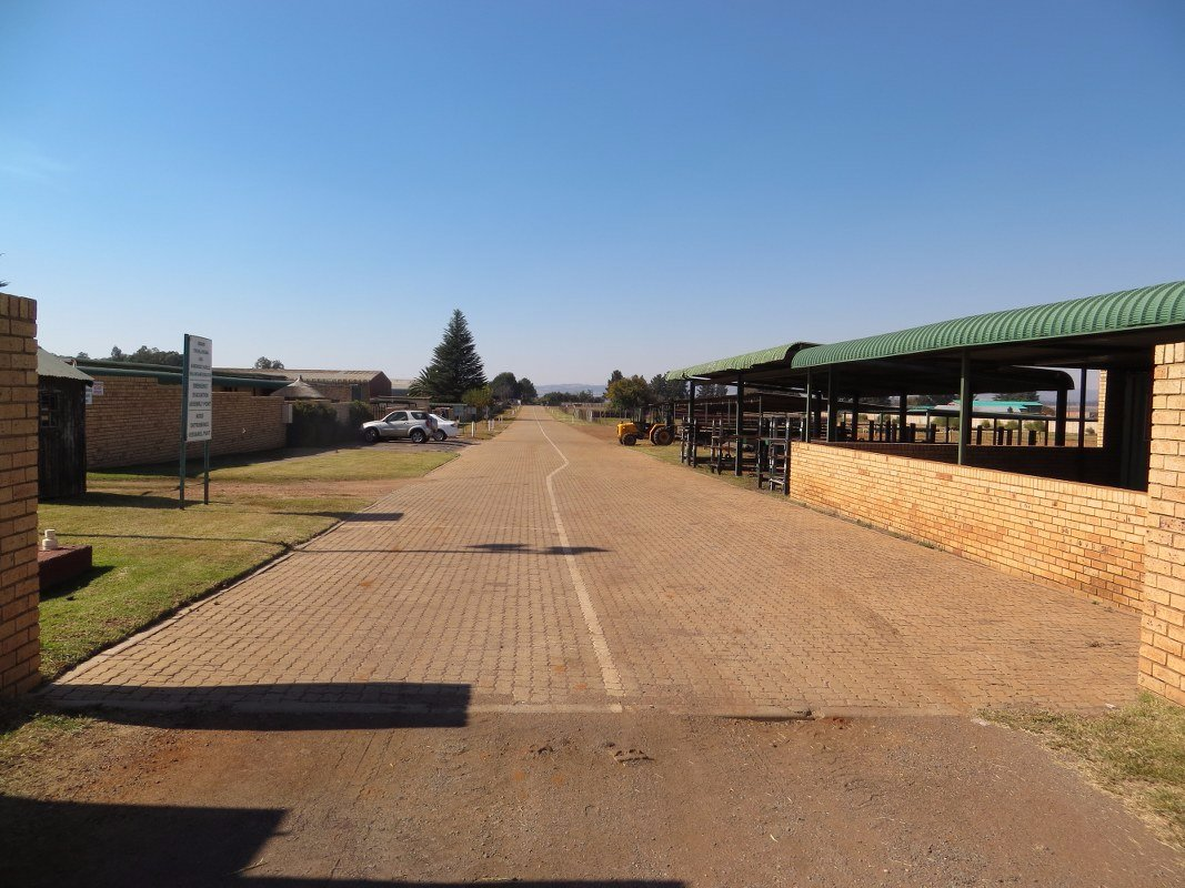 Kliprivier property for sale. Ref No: 13514022. Picture no 9