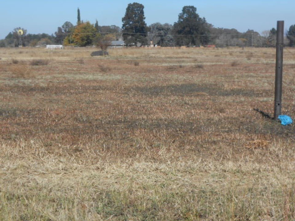 Buyscelia property for sale. Ref No: 13482866. Picture no 5