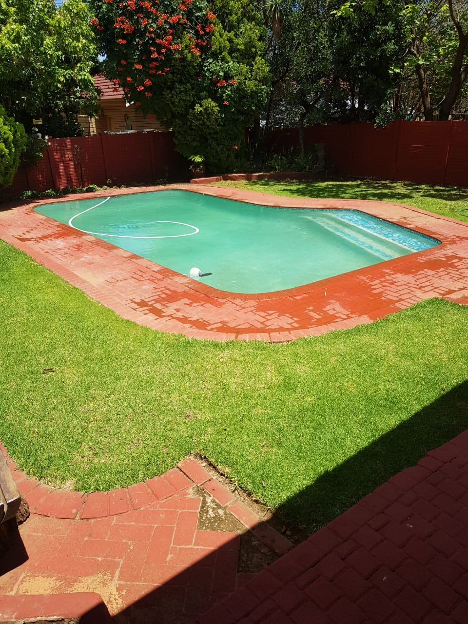 Property and Houses to rent in Free State, House - ZAR ,  9,00*,M