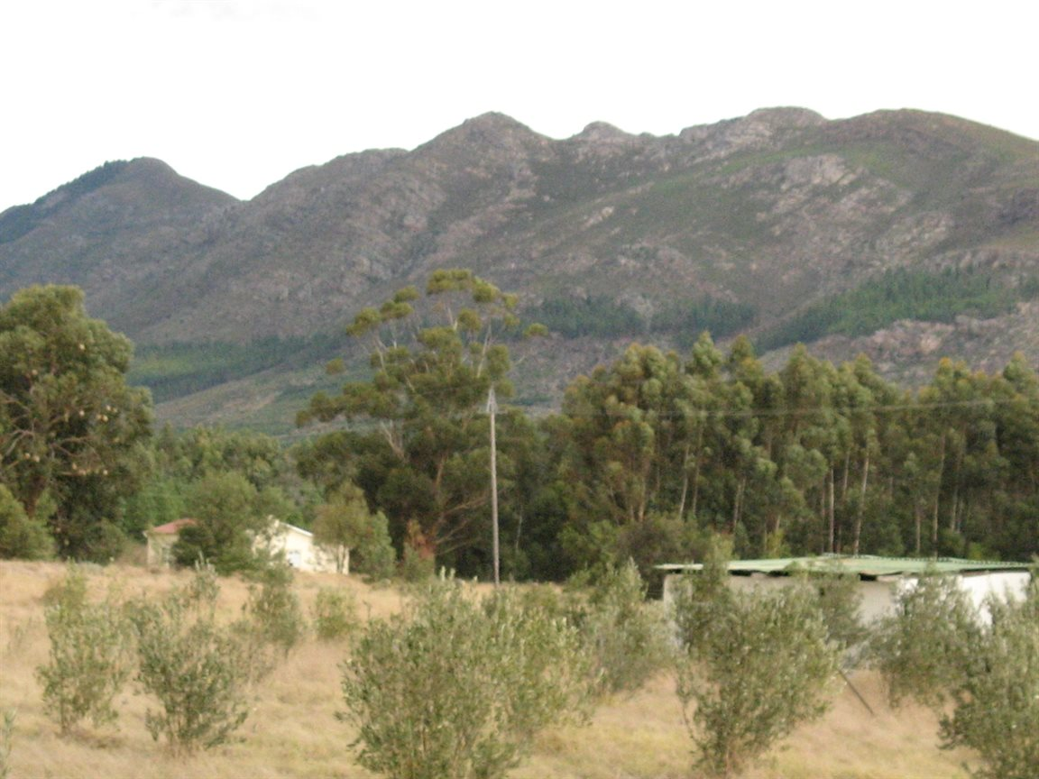 Tulbagh for sale property. Ref No: 12777178. Picture no 7