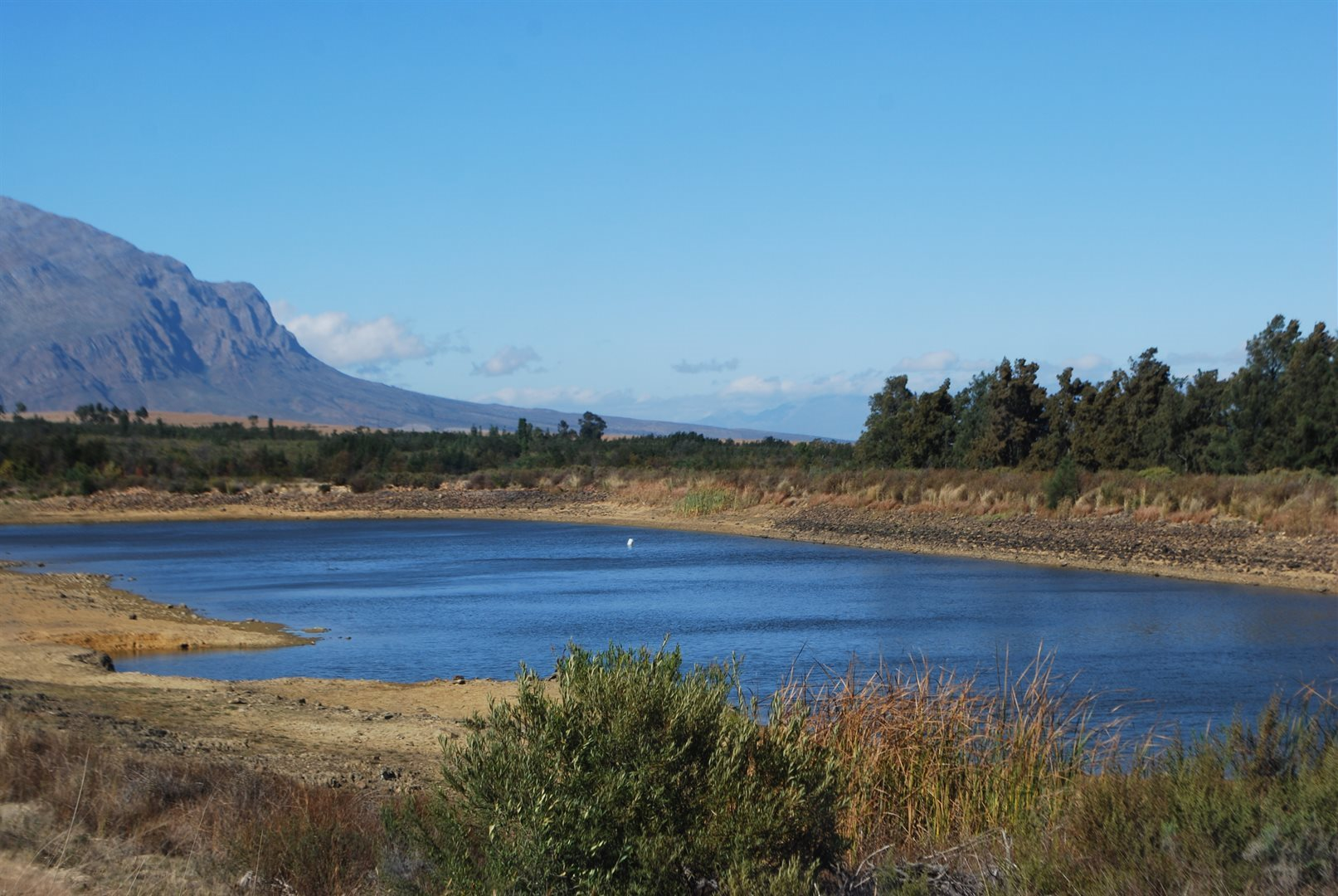 Tulbagh property for sale. Ref No: 13483757. Picture no 3