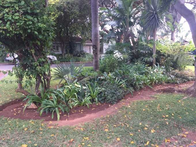 Theresapark property for sale. Ref No: 13507044. Picture no 2