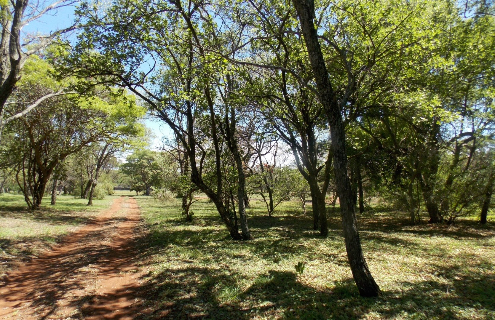 Cullinan Rural property for sale. Ref No: 13521548. Picture no 8