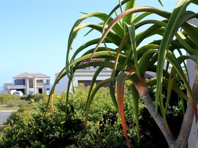 Calypso Beach property for sale. Ref No: 13363660. Picture no 3