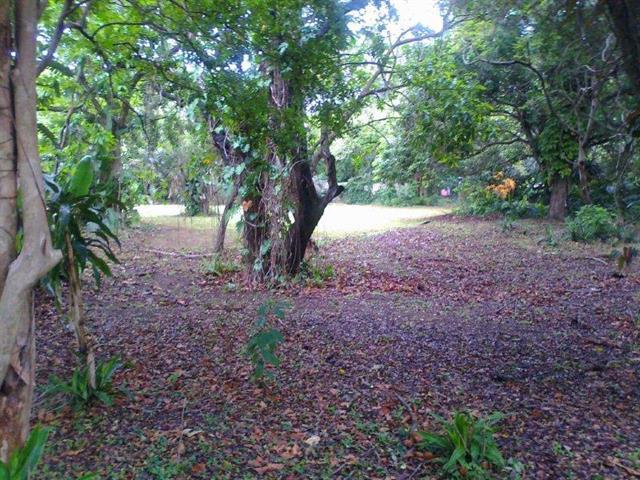 Umtentweni property for sale. Ref No: 12736859. Picture no 2
