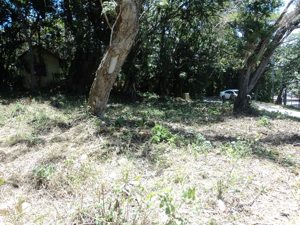 Pennington property for sale. Ref No: 13359220. Picture no 12