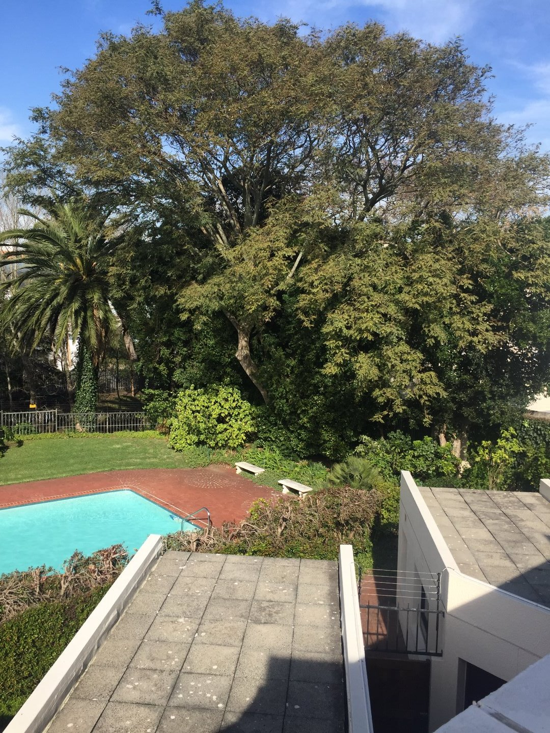 Newlands property to rent. Ref No: 13504641. Picture no 5