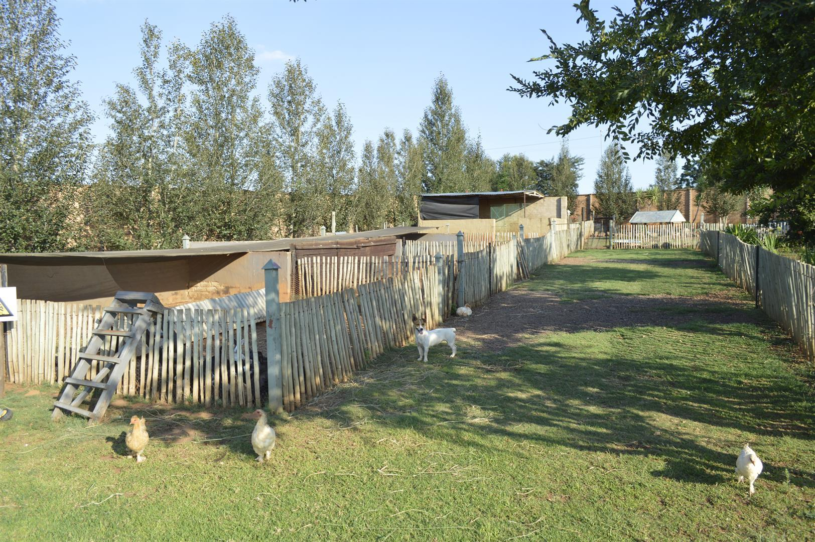 Raslouw A H property for sale. Ref No: 13442161. Picture no 31