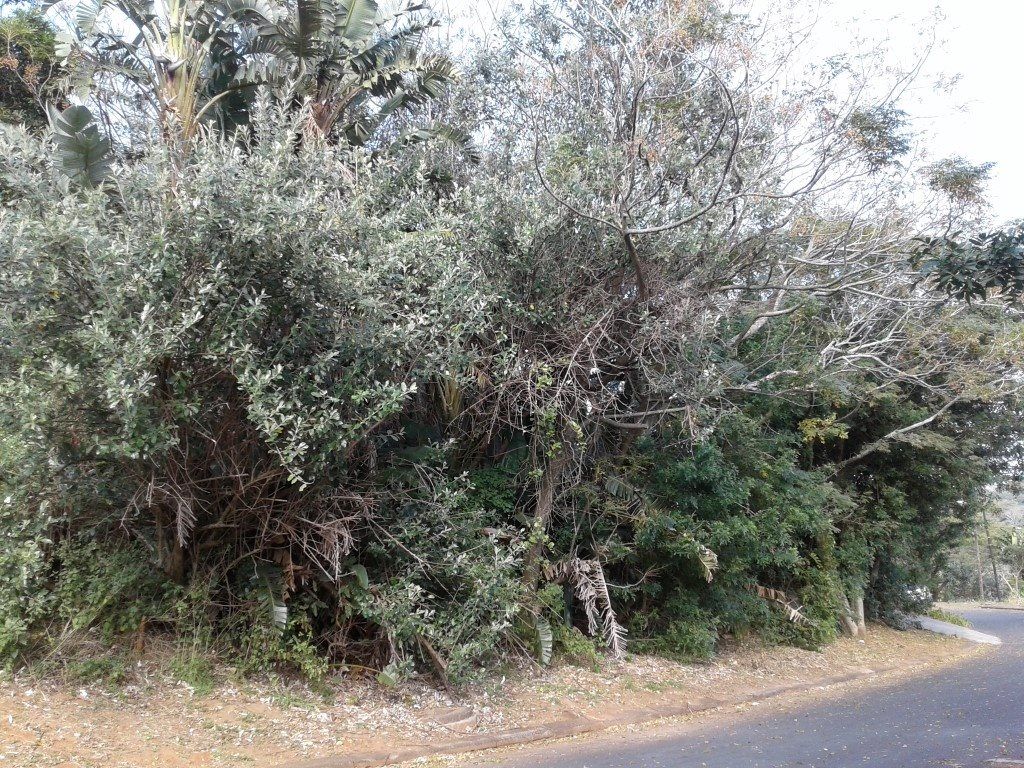 Uvongo property for sale. Ref No: 13354961. Picture no 1