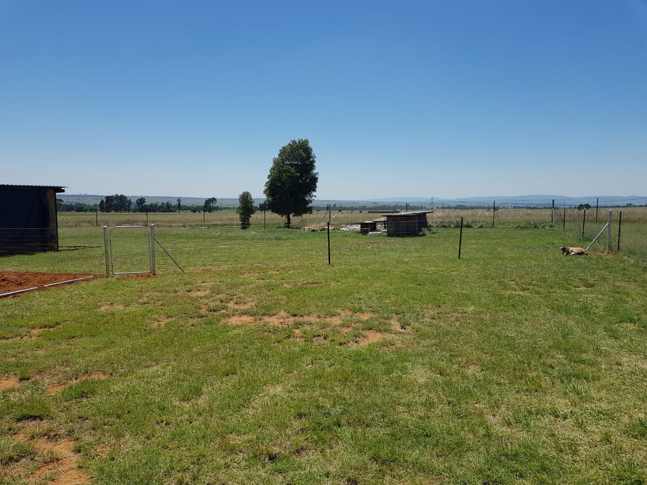 Allewynspoort property for sale. Ref No: 13497711. Picture no 34