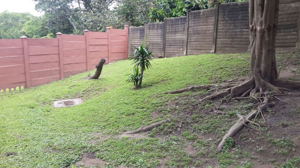 Arboretum property for sale. Ref No: 13394827. Picture no 6
