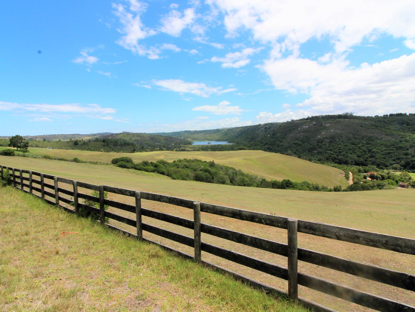 Piesang Valley property for sale. Ref No: 13579591. Picture no 11