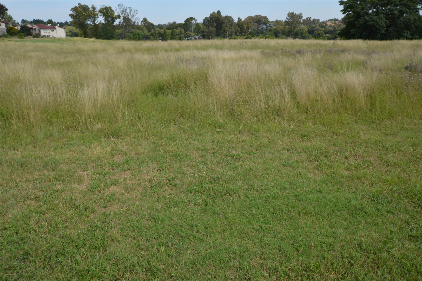 Vaalpark property for sale. Ref No: 13529561. Picture no 3
