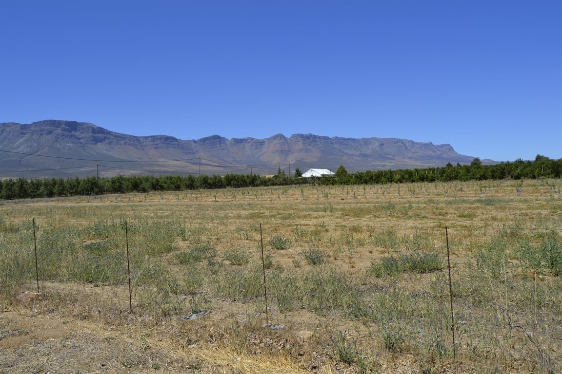 Prince Alfred Hamlet property for sale. Ref No: 12734402. Picture no 4