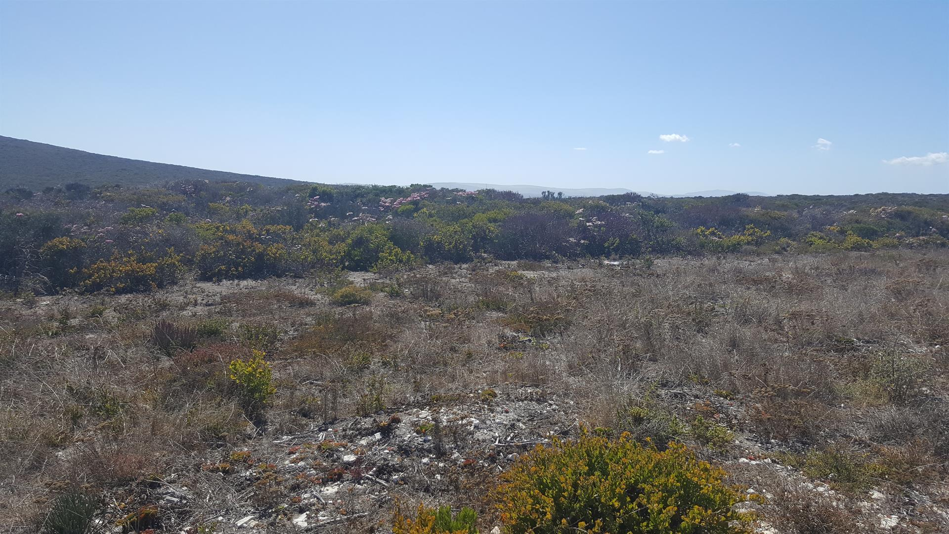 Yzerfontein property for sale. Ref No: 13452380. Picture no 4