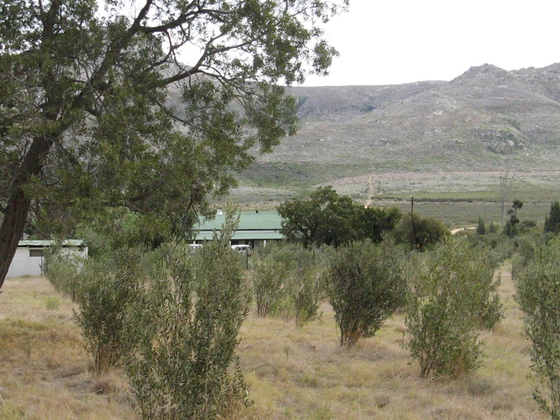 Tulbagh property for sale. Ref No: 12777178. Picture no 9