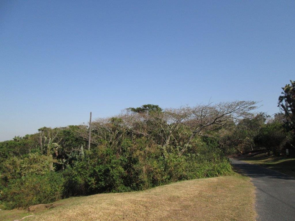 Bazley Beach property for sale. Ref No: 12791429. Picture no 6
