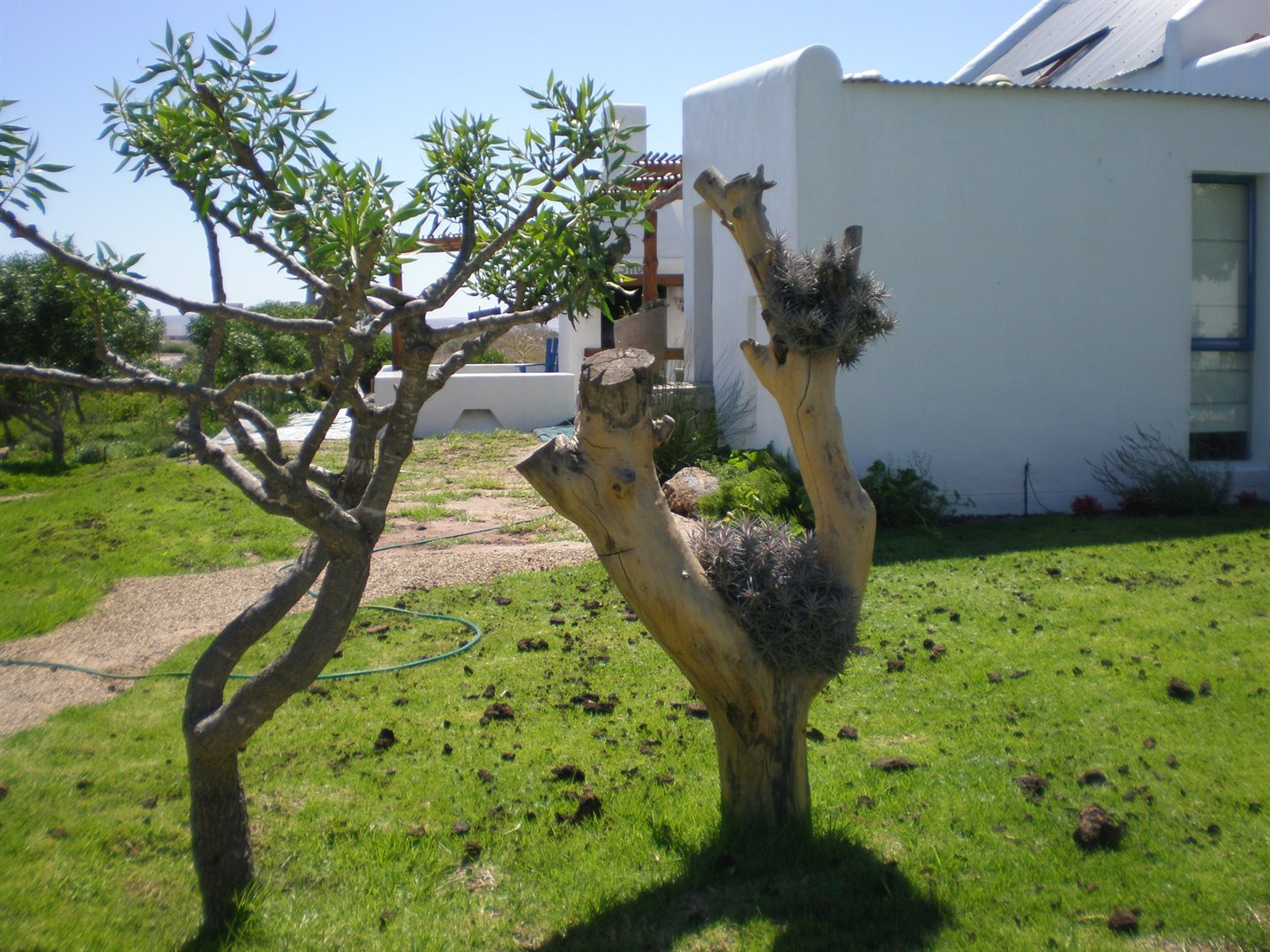 Paternoster property for sale. Ref No: 13493947. Picture no 8