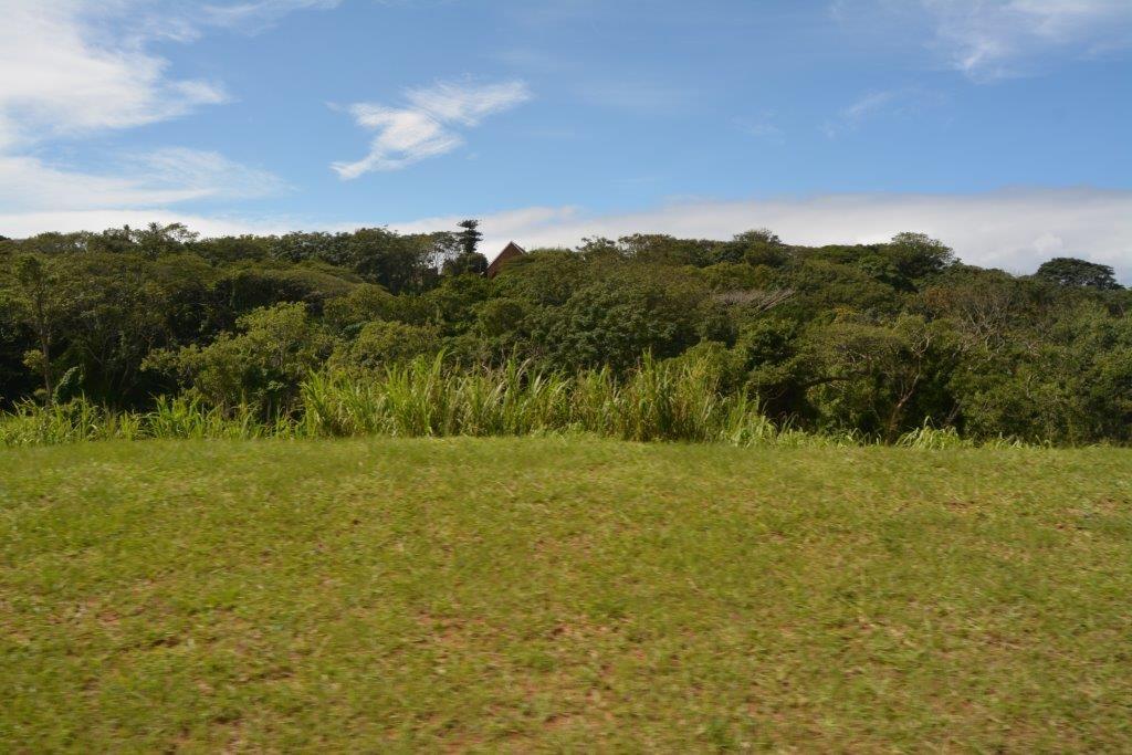 Sea Park property for sale. Ref No: 13436554. Picture no 16
