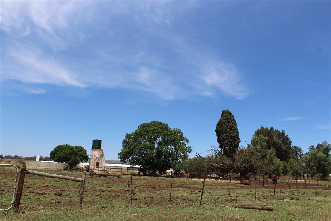 Rietfontein I Q property for sale. Ref No: 13409258. Picture no 7