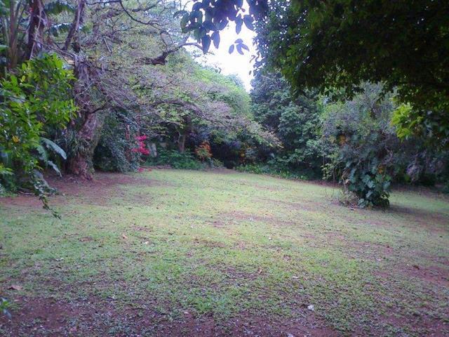 Umtentweni property for sale. Ref No: 12736859. Picture no 4