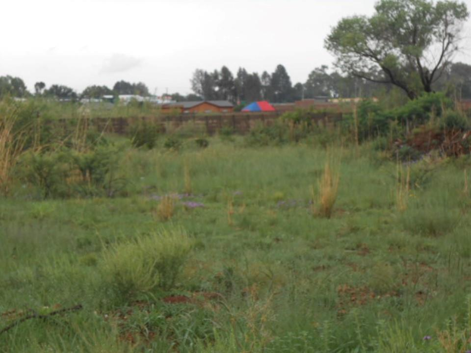 Kookrus property for sale. Ref No: 13454314. Picture no 3