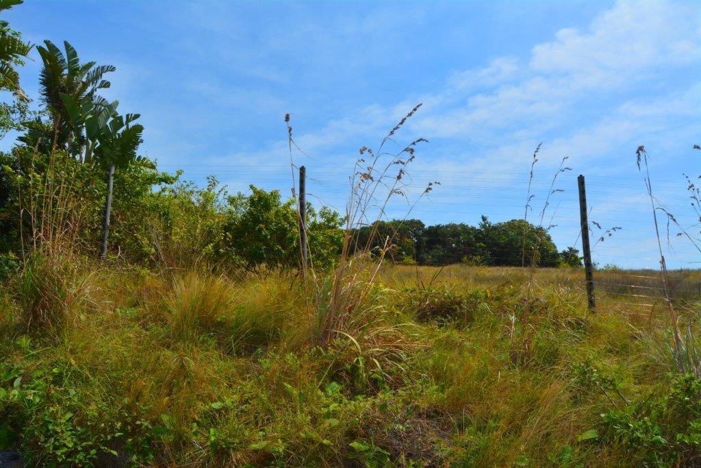 Oslo Beach property for sale. Ref No: 13390652. Picture no 14